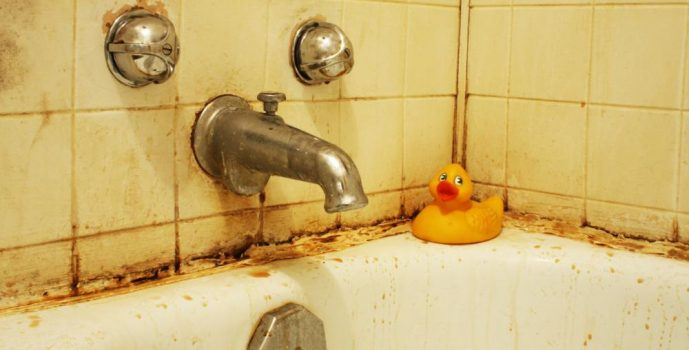 Things You Need to Know About Rusty or Discolored Water